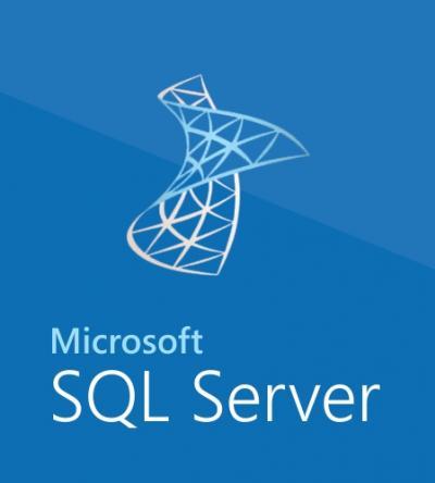 MICROSOFT SQL Server Standard +CAL 2019 SNGL OLP NL