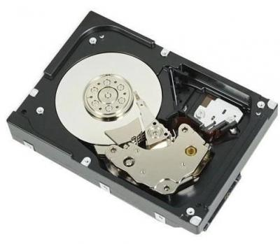 """DELL Server disk 3,5"""" HDD 1TB"""